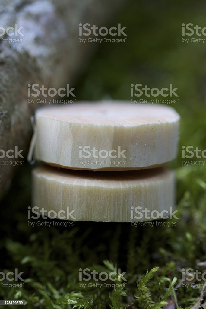 Natur Jojo stock photo