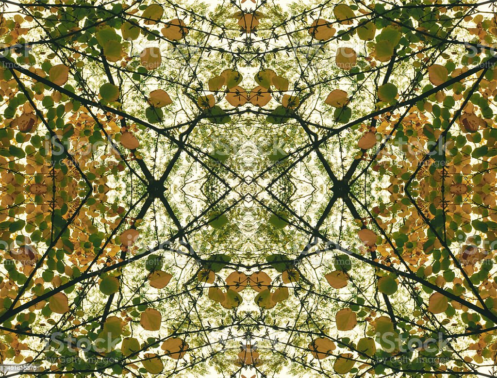 Nature kaleidoscope leaves background stock photo