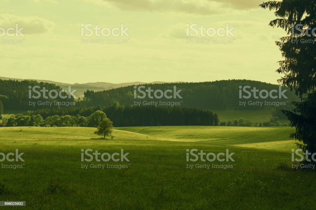 Nature landscape in green tones stock photo