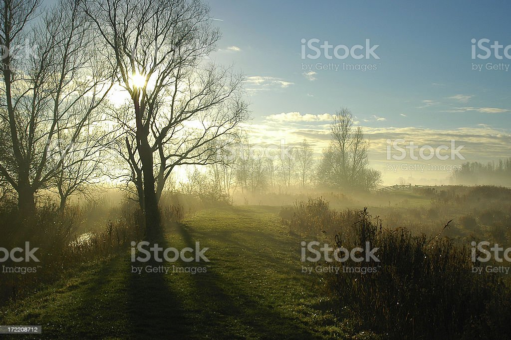 nature landscape in the early morning royalty-free stock photo