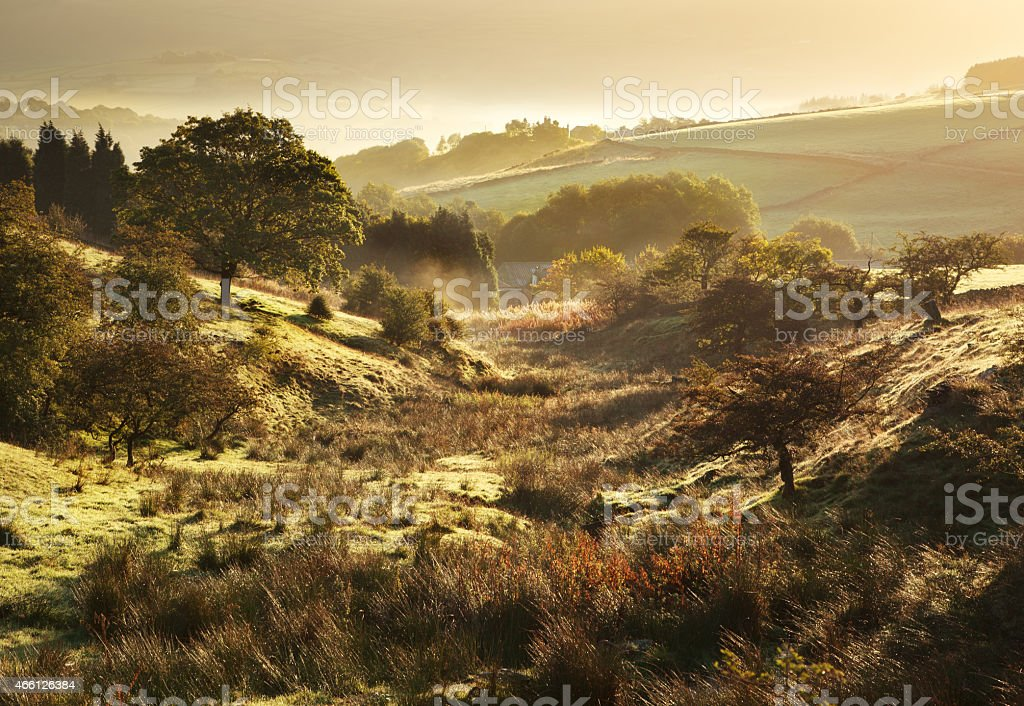 Nature landscape of sunny fields in British countryside stock photo