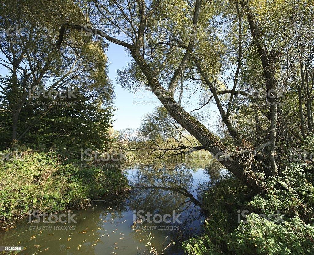 Nature Landscape royalty-free stock photo