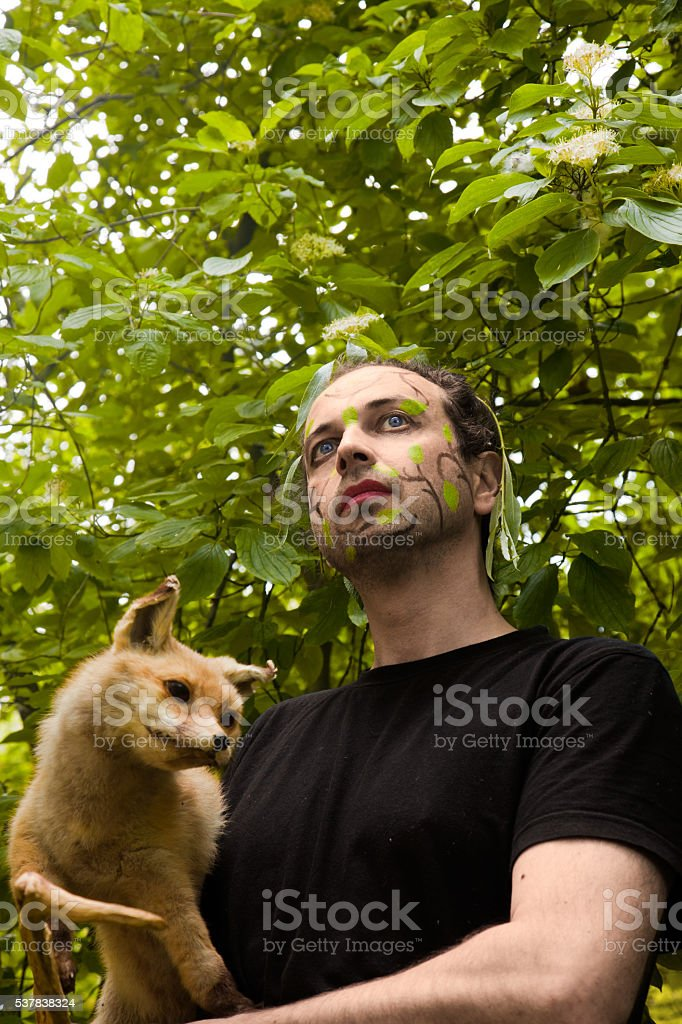 Nature, Leaves Man, Red Fox stock photo