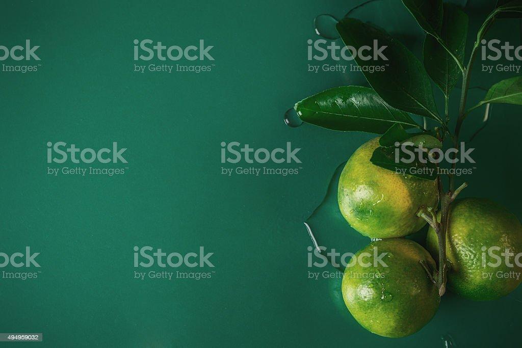nature mandarin stock photo
