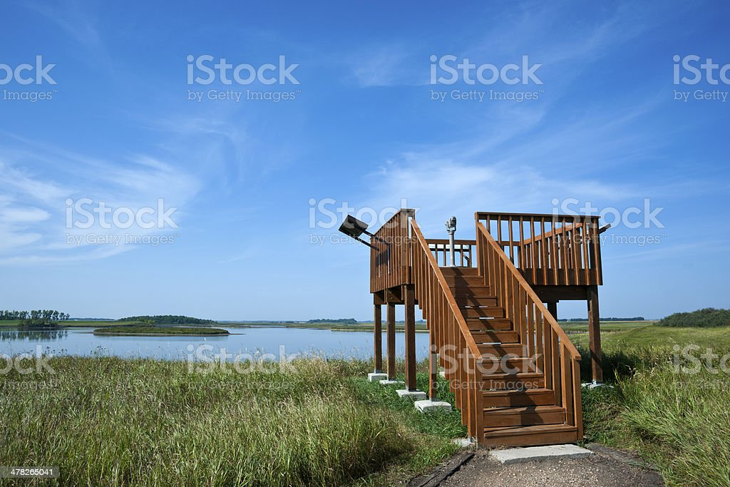 Nature Observation Platform royalty-free stock photo
