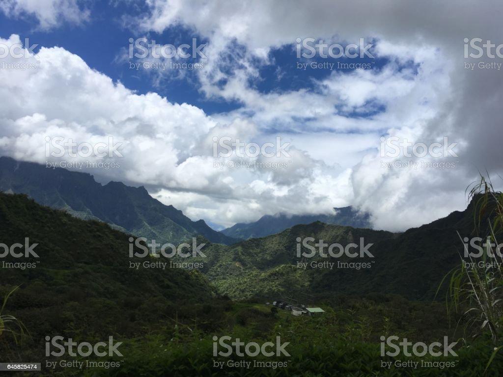 Nature on Tahiti stock photo