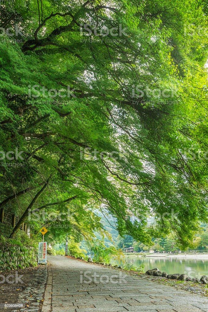 Nature path along Oi River in Arashiyama, Kyoto, Japan stock photo