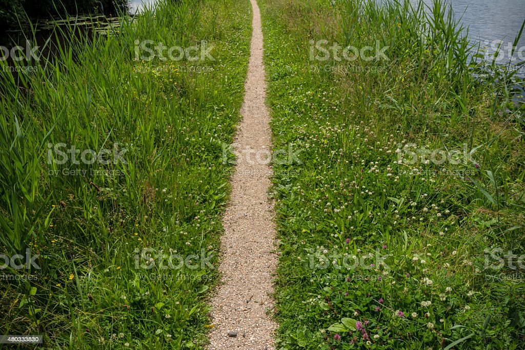 Nature Path stock photo