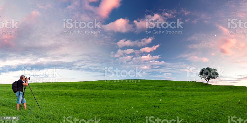 Nature photographer on green meadow in front of single tree stock photo