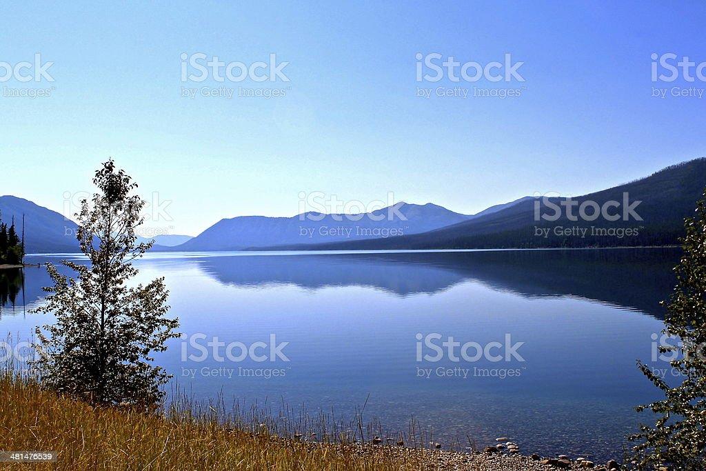 Nature royalty-free stock photo