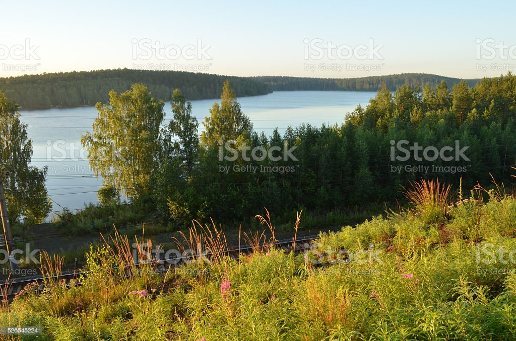 Nature royalty-free stock photo