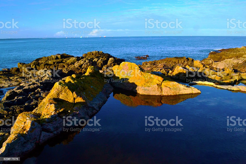 Nature pool royalty-free stock photo