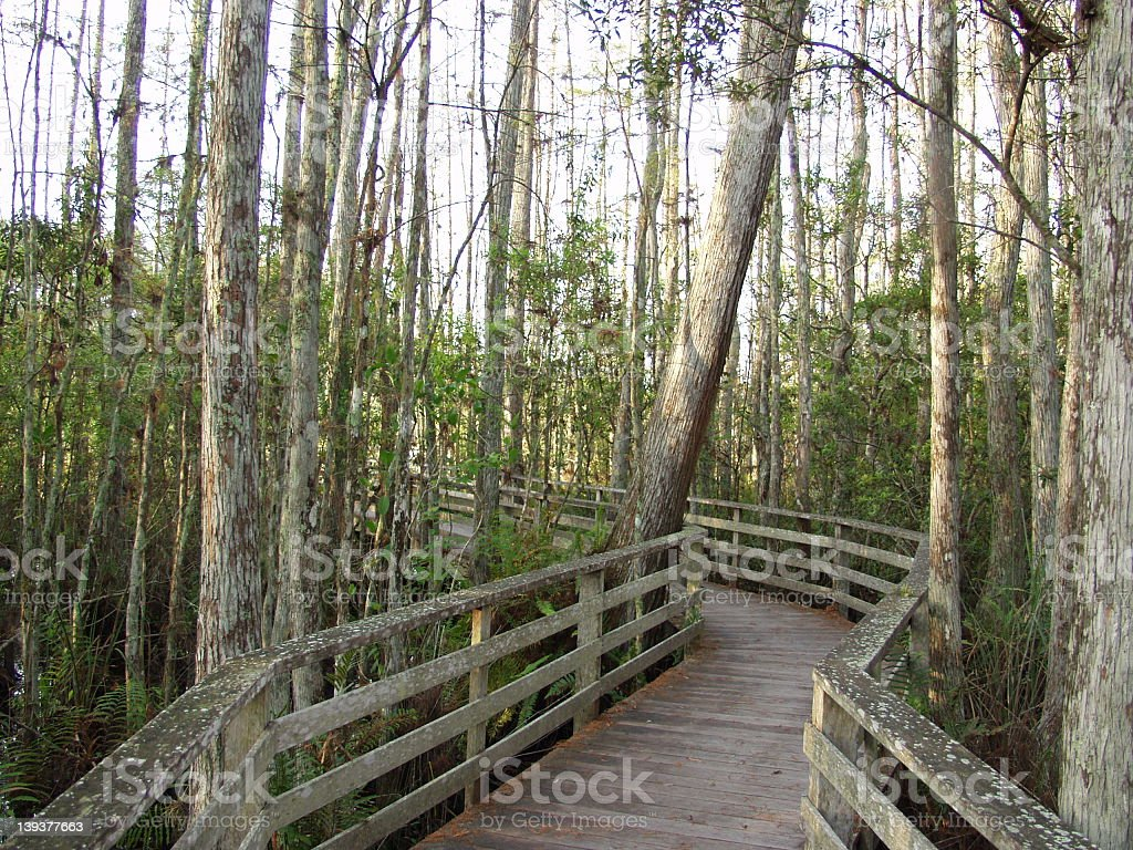 Nature Preserve 2279 royalty-free stock photo
