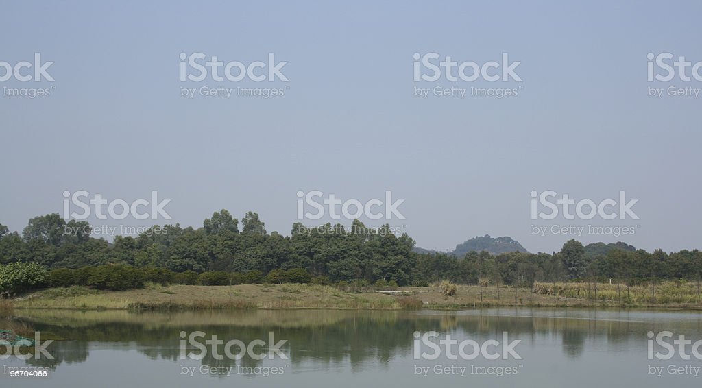 Nature Preserved Wetland Landscape View royalty-free stock photo