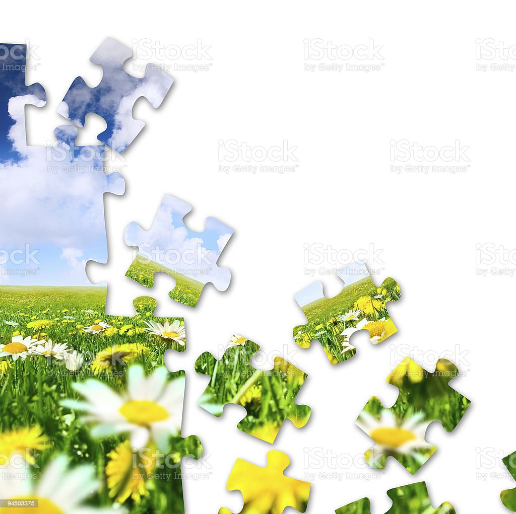 Nature puzzle royalty-free stock photo