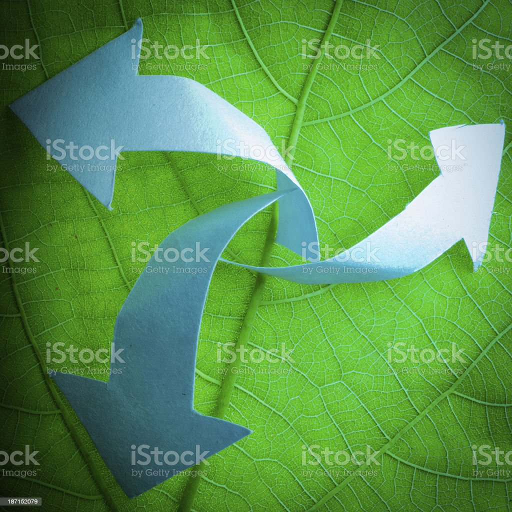 nature recycle royalty-free stock photo