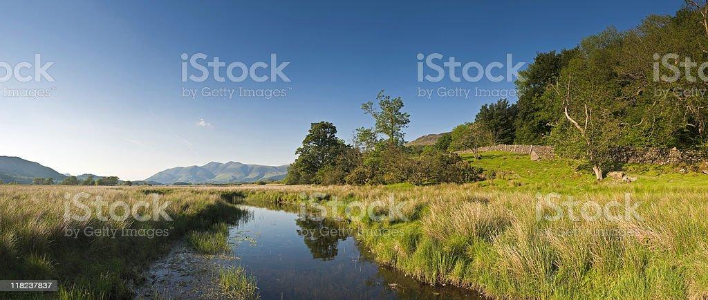 XXXL Nature Reflected stock photo
