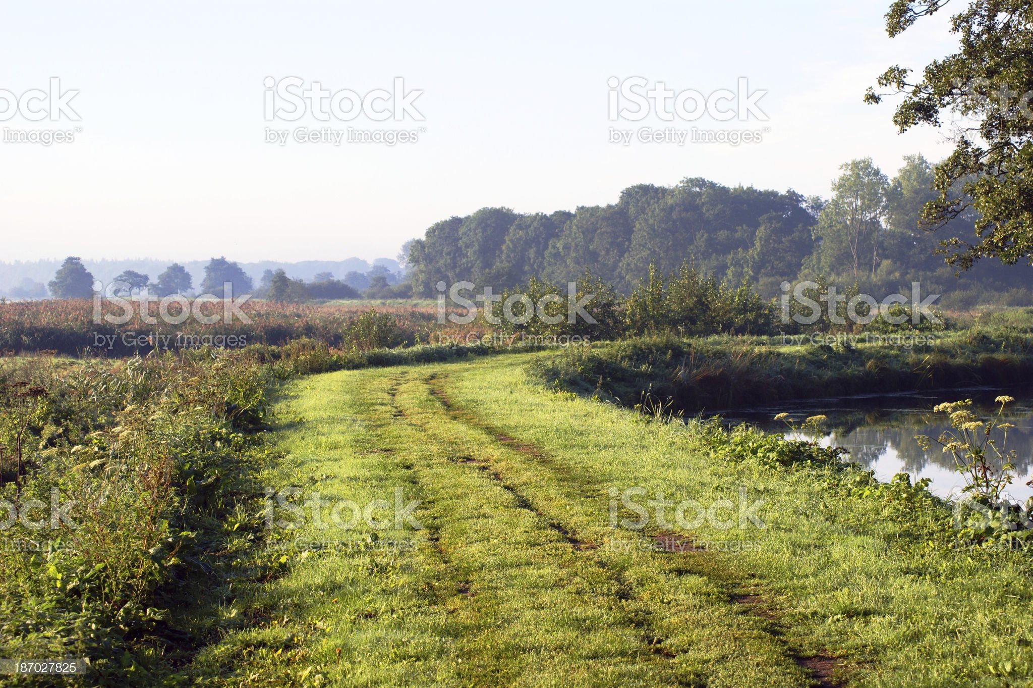 nature reserve Friese Veen in the Netherlands royalty-free stock photo