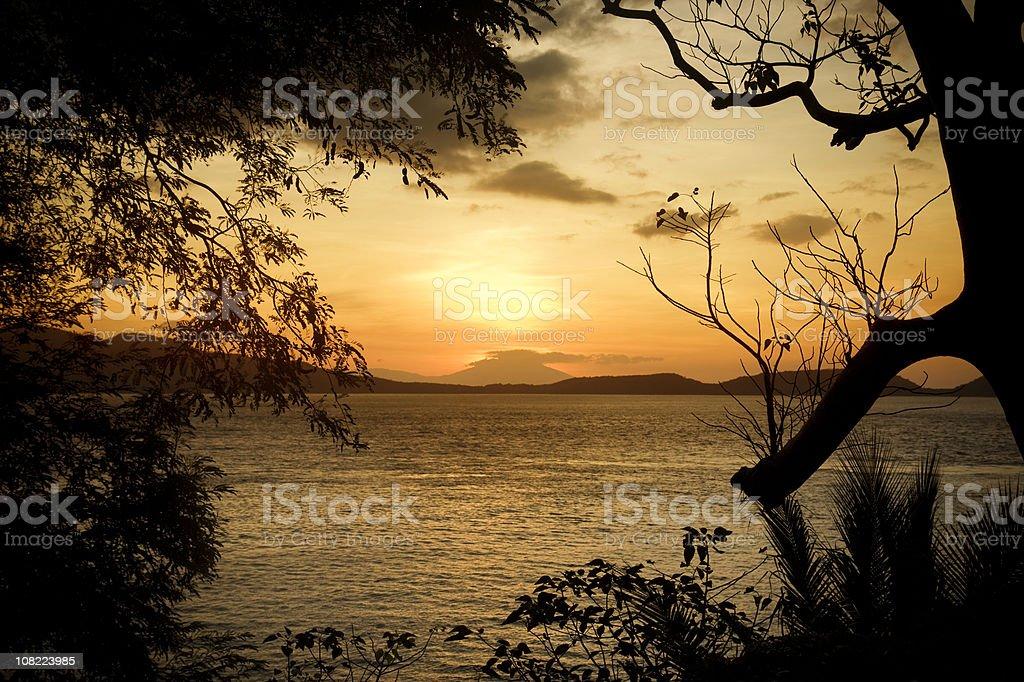Nature sunset royalty-free stock photo
