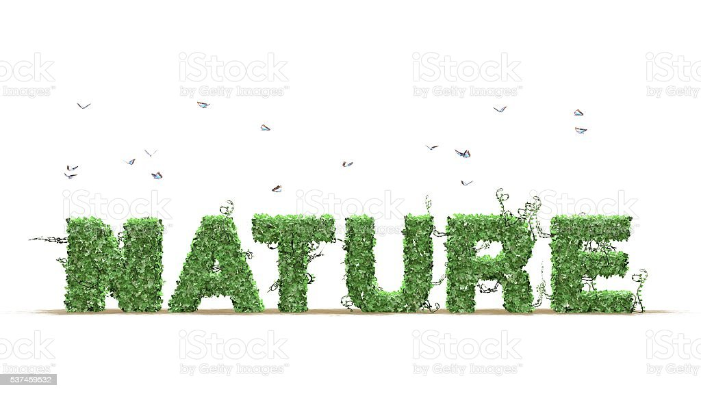 Nature text from green ivy leaves on white background stock photo