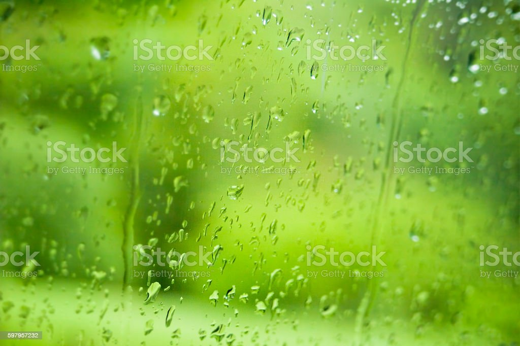 Nature through the window in a rainy day. stock photo