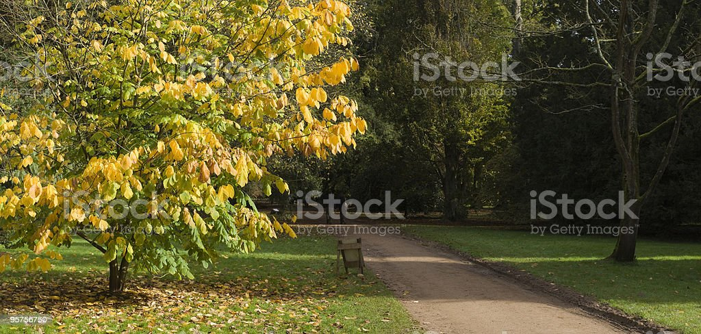 Nature trail royalty-free stock photo