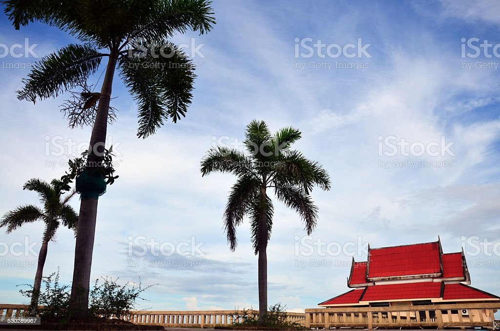 Nature wind and leaf on tree Hat Saen Suk Lampam stock photo