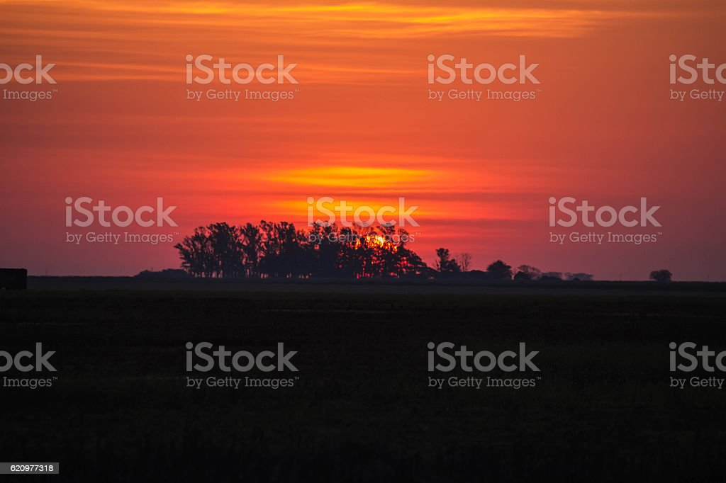 nature  with beautiful colors stock photo