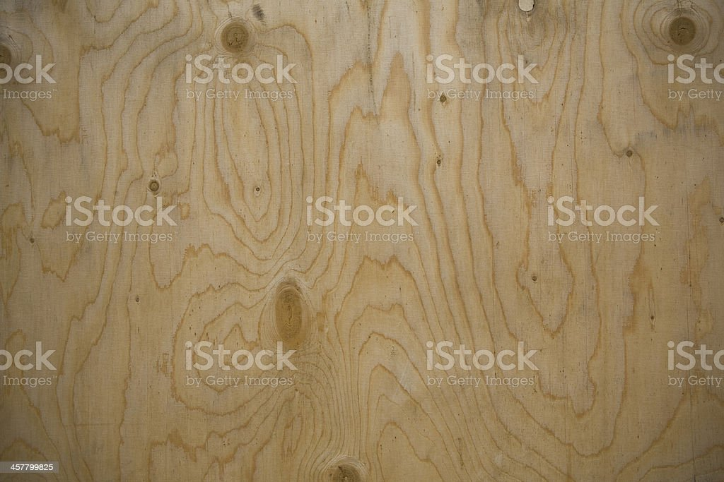 Nature Wood XXL royalty-free stock photo