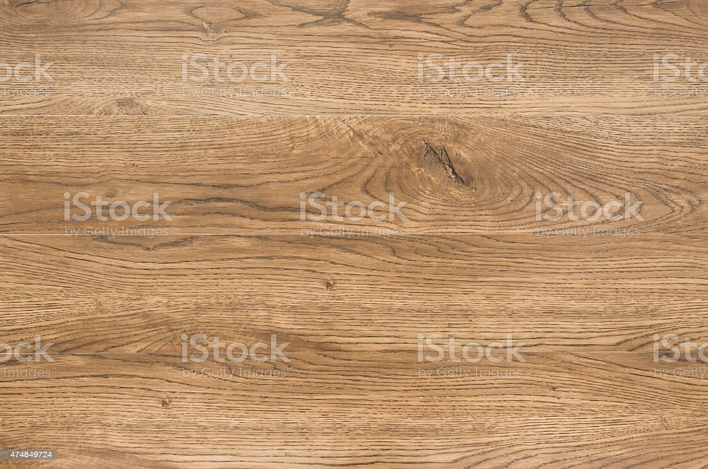 Oak Pictures, Images and Stock Photos  iStock