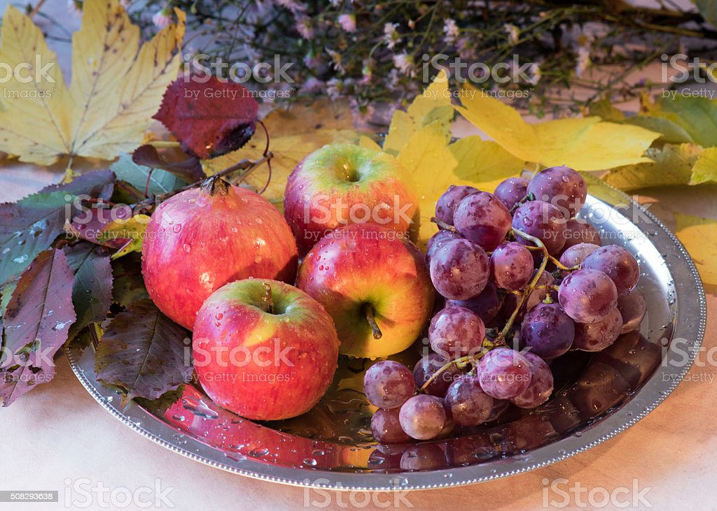 Naturemort with fruits and flowers of autumn. stock photo