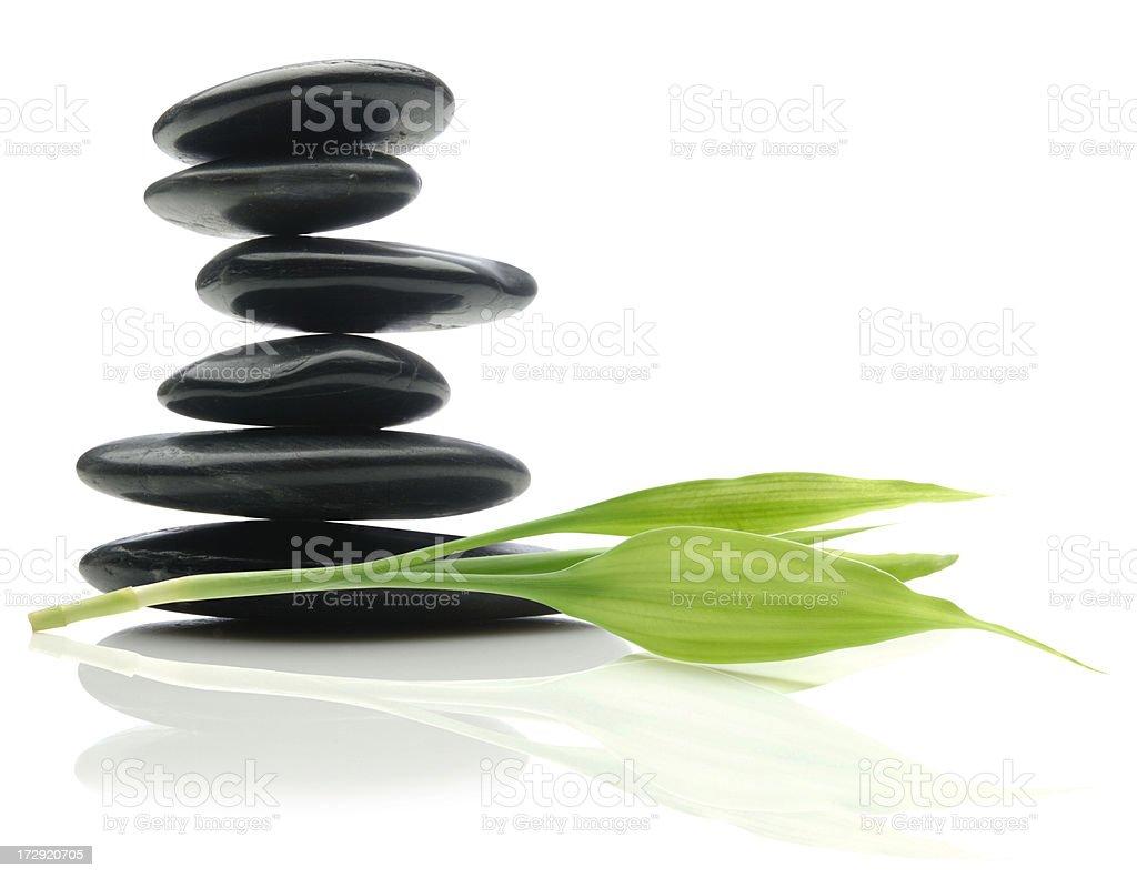 Nature's Balance royalty-free stock photo