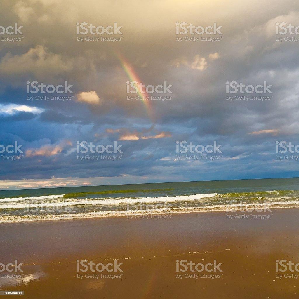 Nature's beauty stock photo