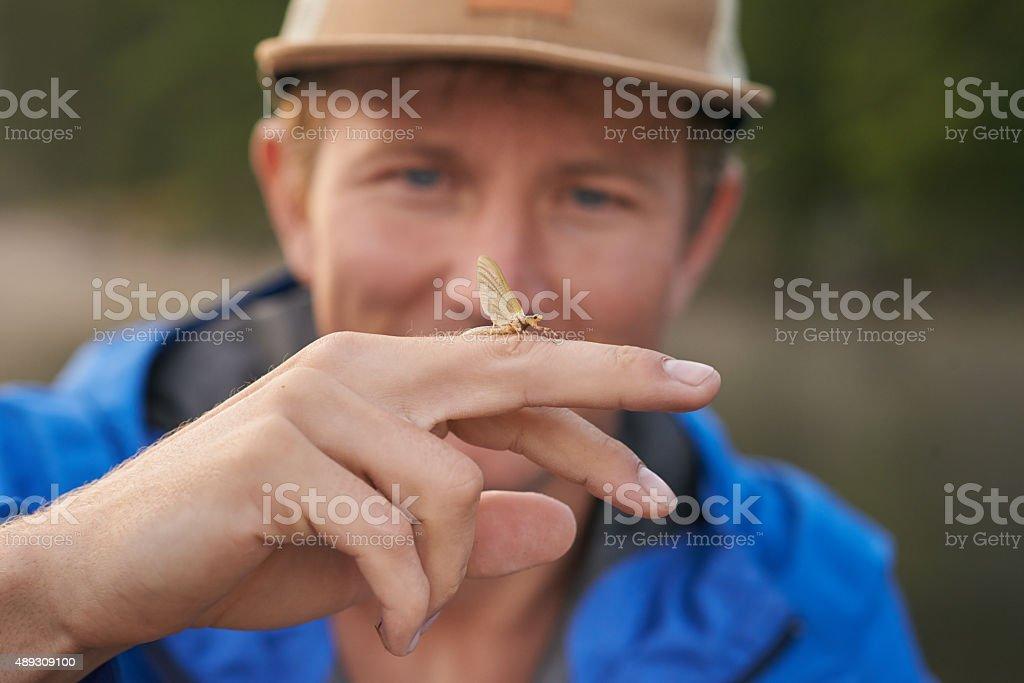 Nature's small wonders stock photo