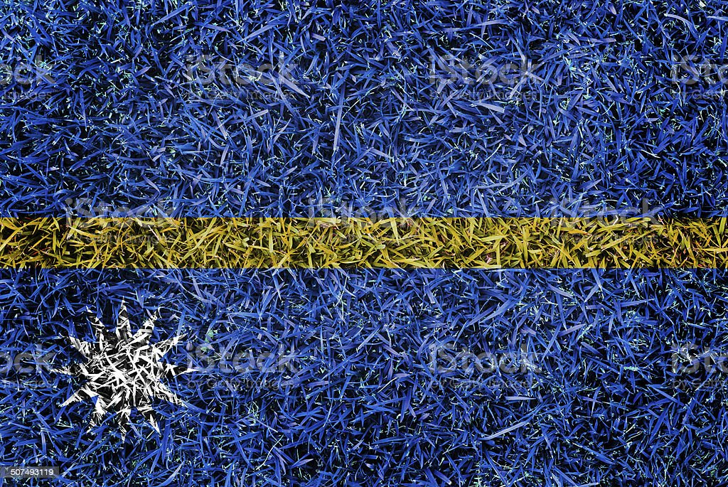 Nauru Flag color grass texture background stock photo