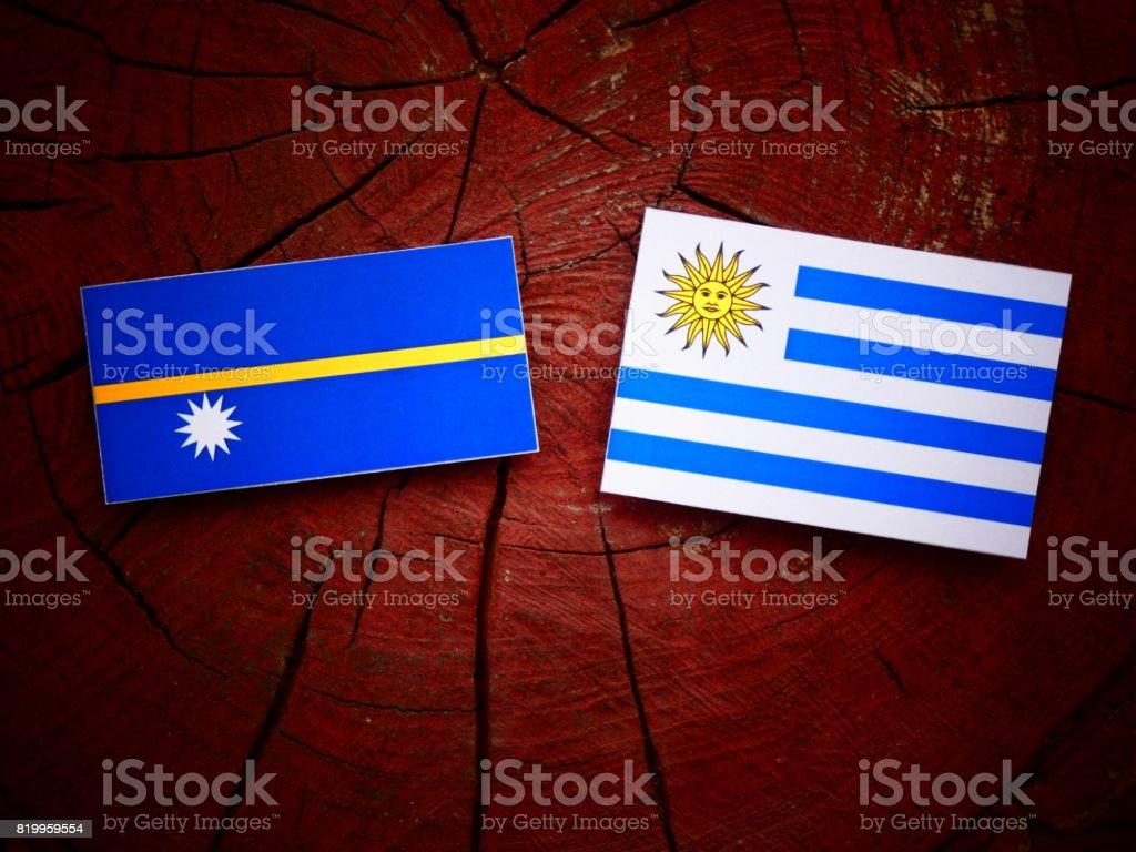 Nauru flag with Uruguaian flag on a tree stump isolated stock photo