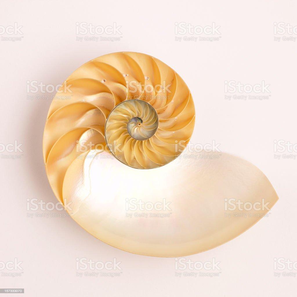Nautical wheel on a tan background stock photo