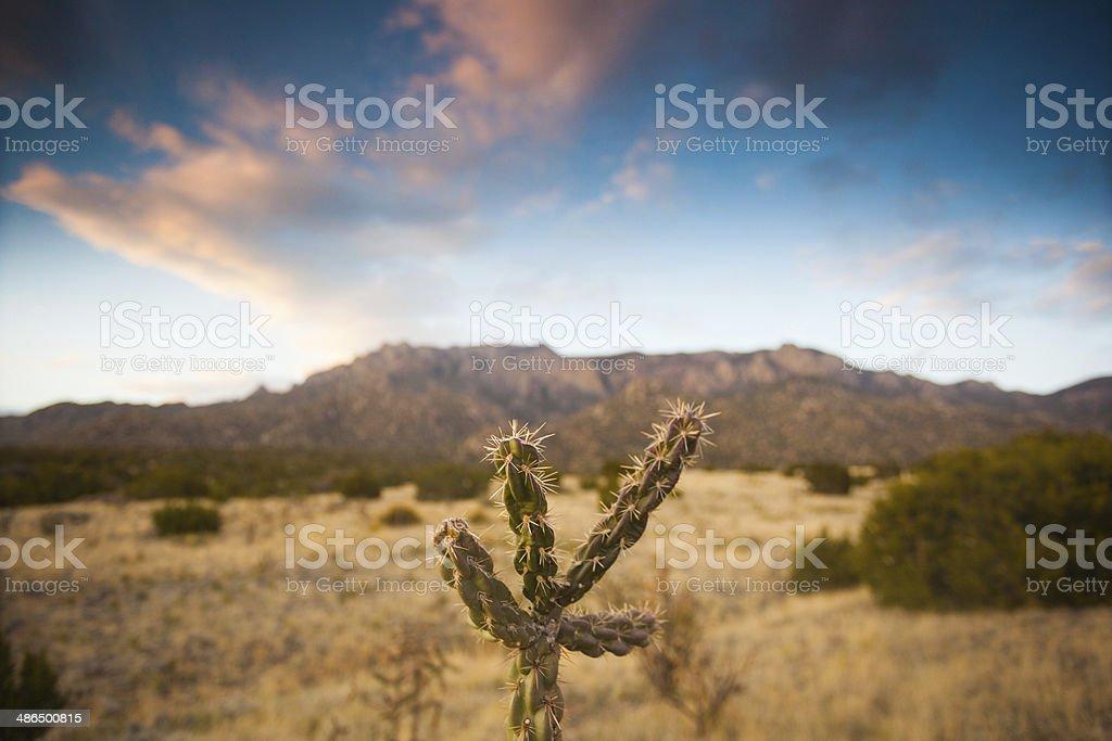 nautre landscape sunset stock photo