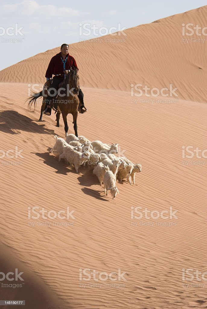 Navajo Indian herding sheep royalty-free stock photo