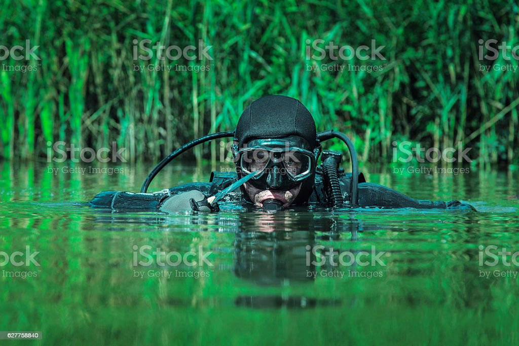 Navy SEAL frogman stock photo