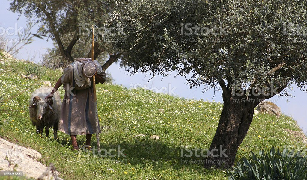 Nazareth Shepherd stock photo