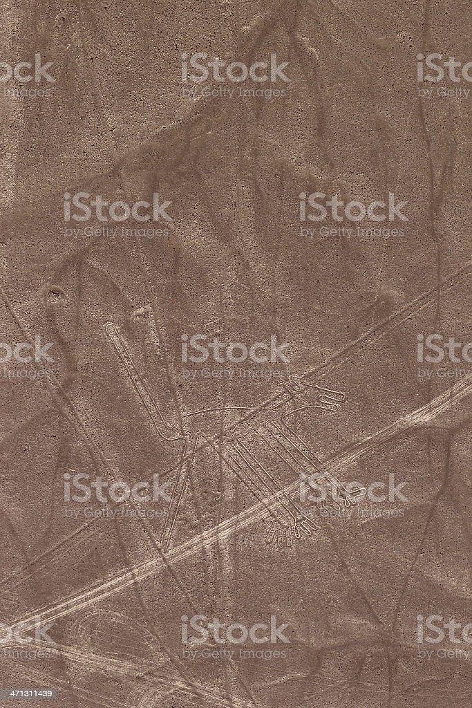 Nazca Lines - Dog royalty-free stock photo
