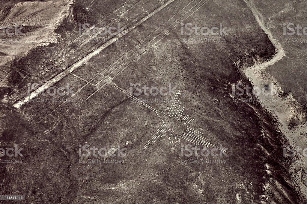 Nazca Lines - Hummingbird royalty-free stock photo