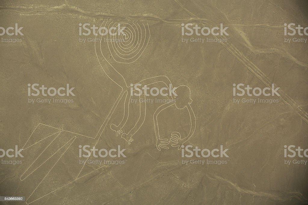 Nazca Lines,  The Monkey stock photo