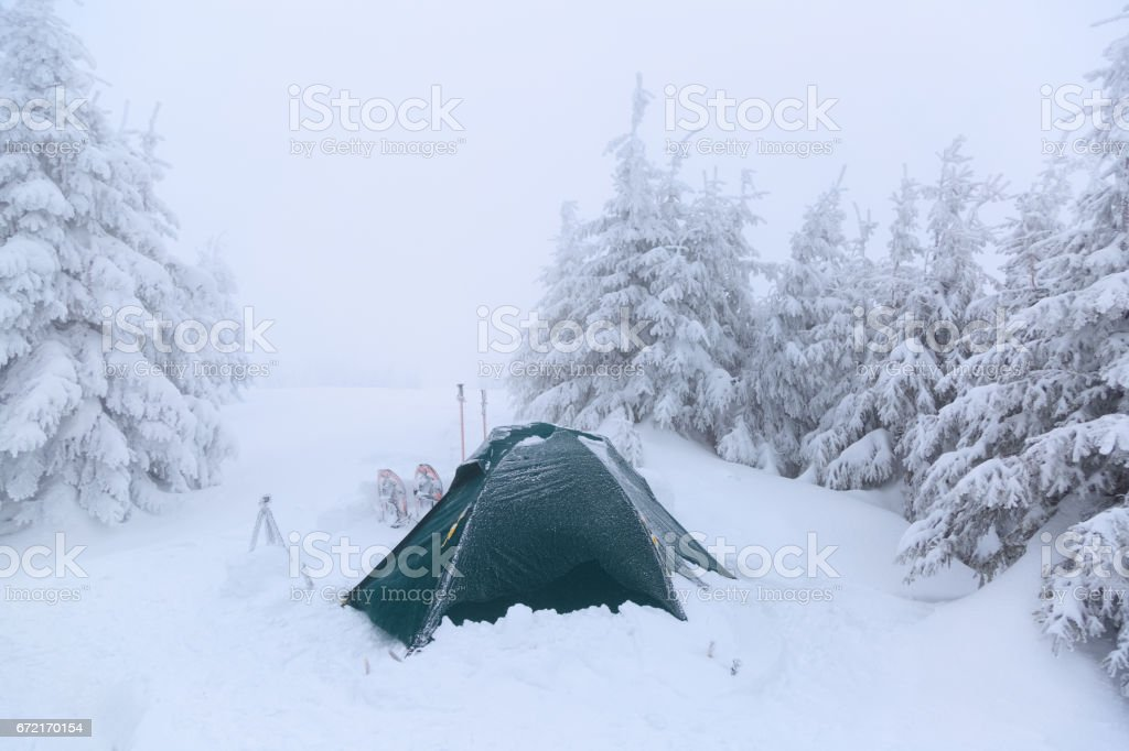Near the tent, covered with snow, are hiking sticks, snowshoes and fluffy, covered with snow, fir-trees on a foggy winter day. stock photo