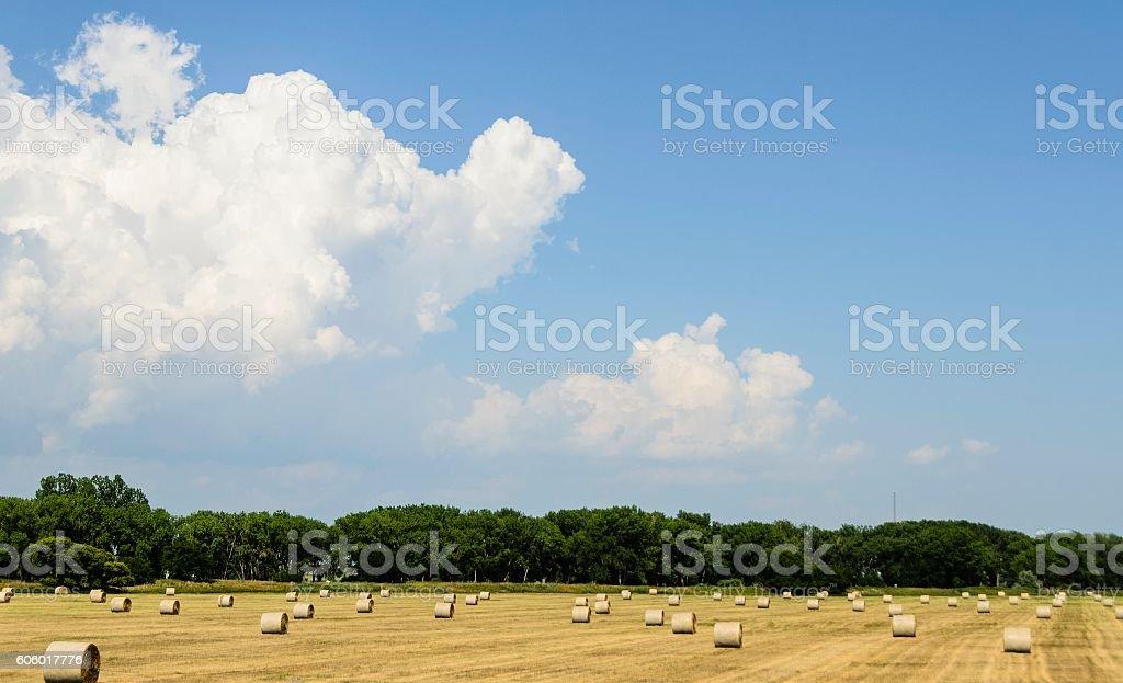 Nebraska Farmland stock photo