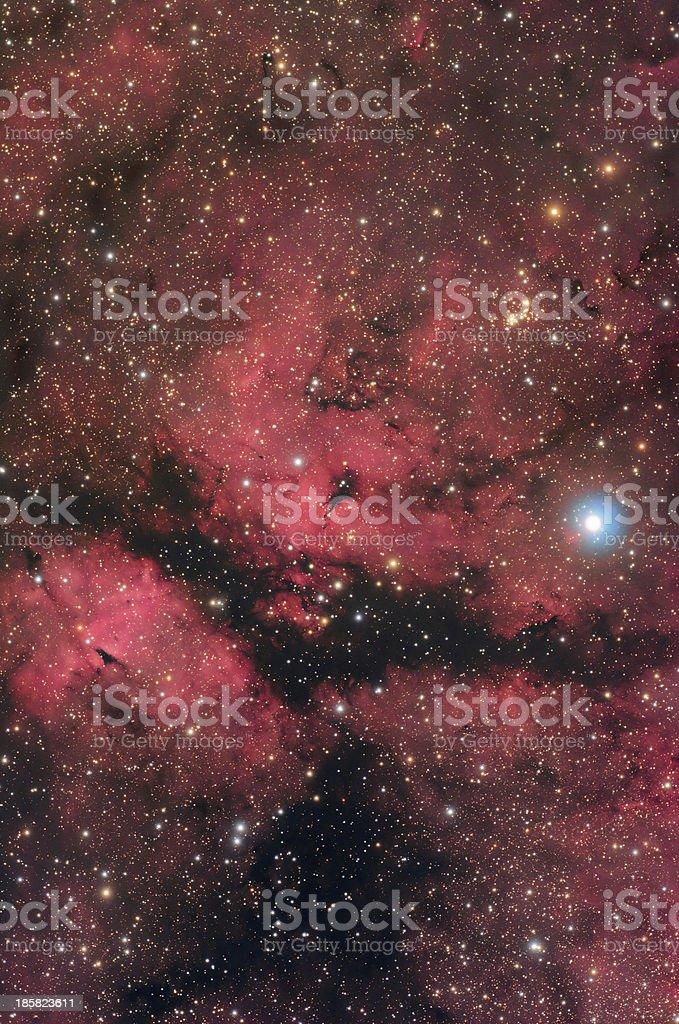 Nebula in Cygnus Constellation royalty-free stock photo