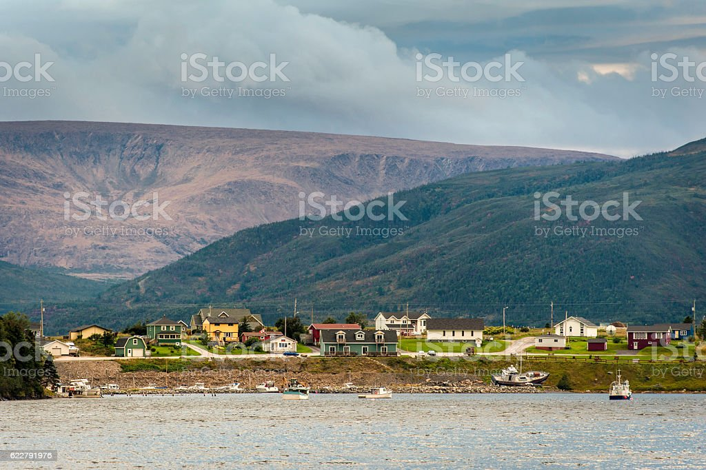Neddy Harbour stock photo
