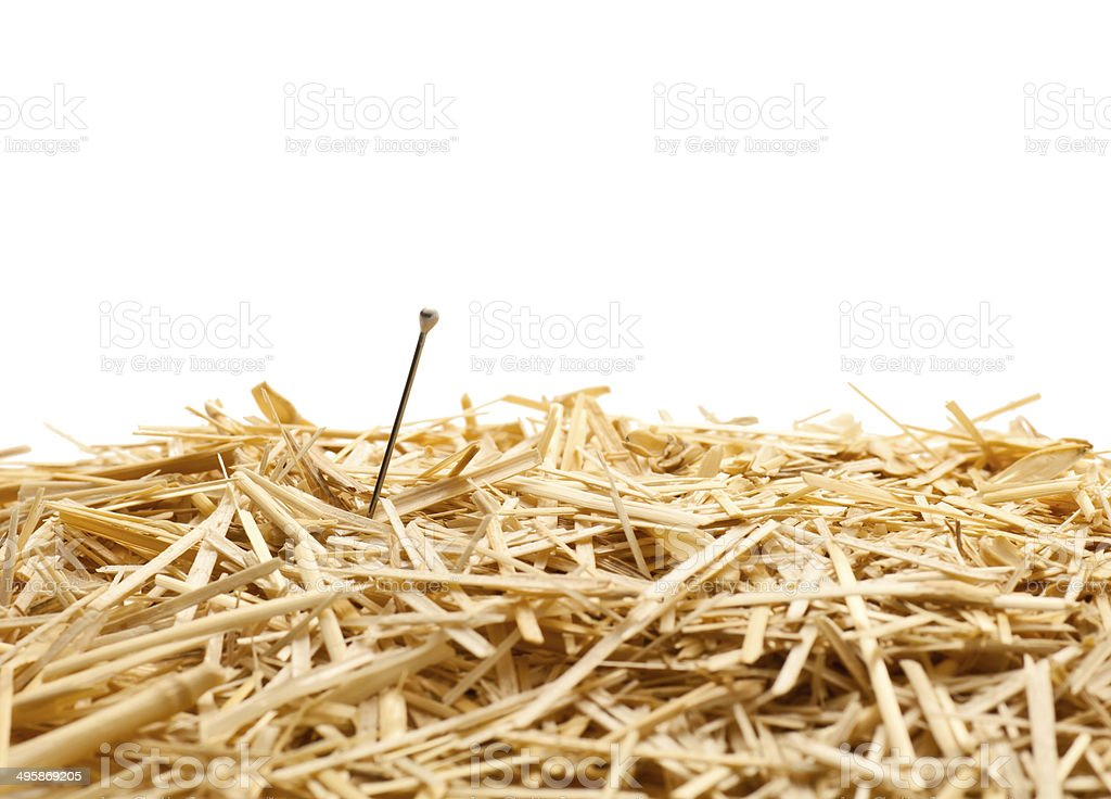Needle in a haystack , Isolated stock photo