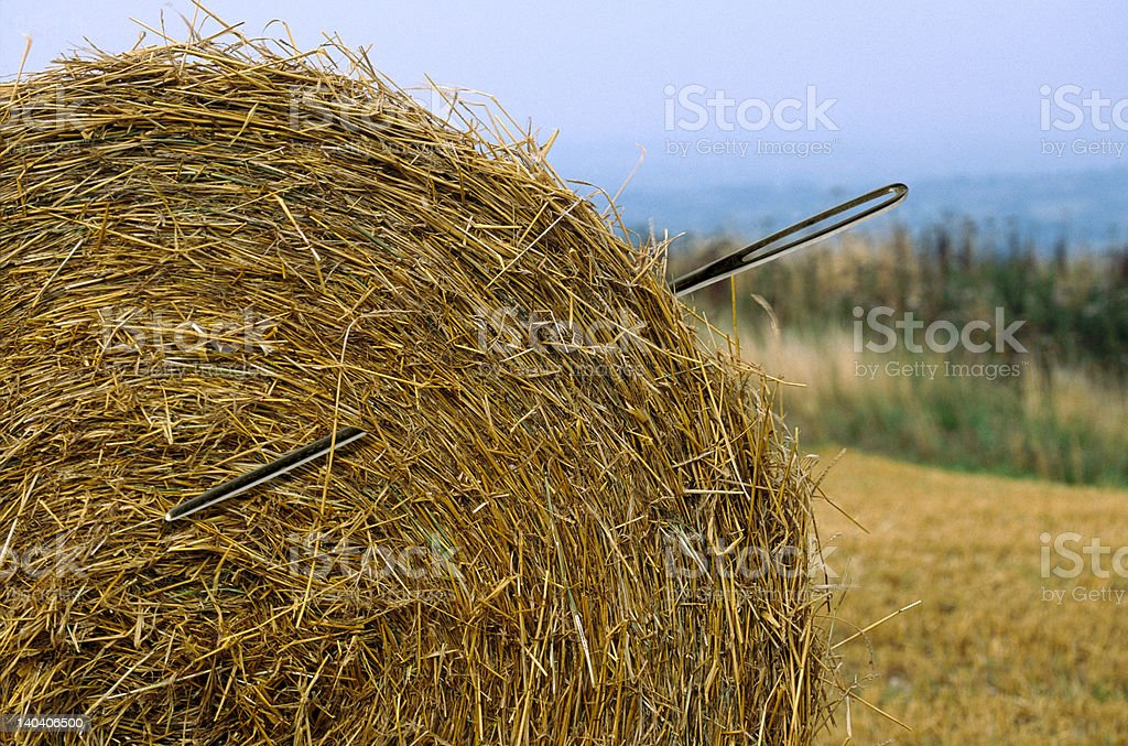 Needle in a haystack royalty-free stock photo